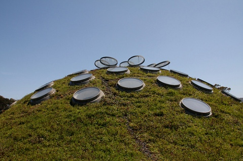 The Living Roof at the California Academy of Science